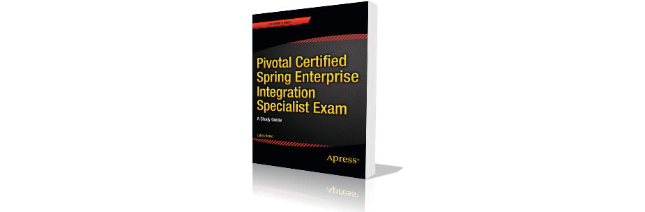 enterprise spring examples and integration tests